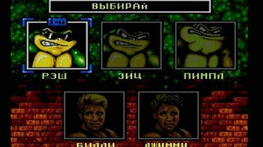 Battletoads and Double Dragon - скриншот 2